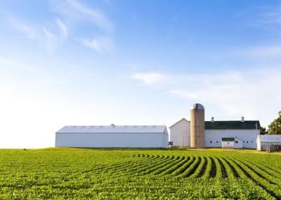 prefabricadas-agricolas (10)
