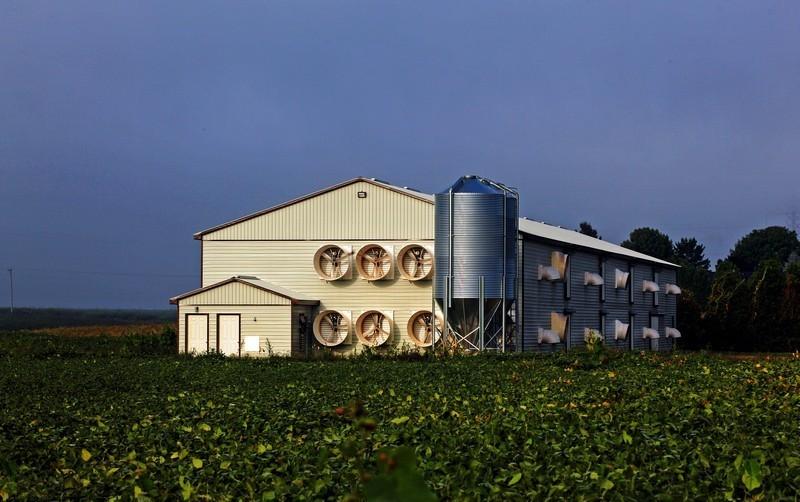 prefabricadas-agricolas (14)