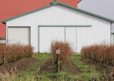 prefabricadas-agricolas (19)