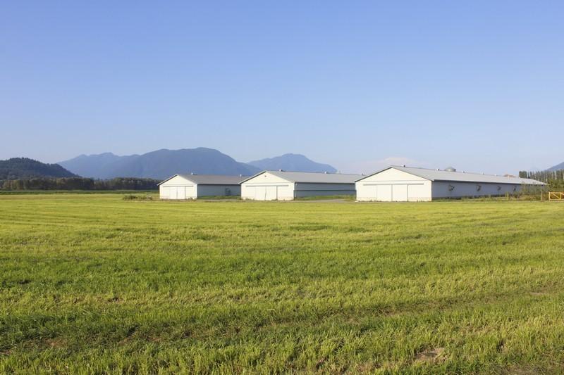 prefabricadas-agricolas (33)