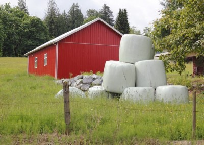 Bailed Hay and Red Utility Building