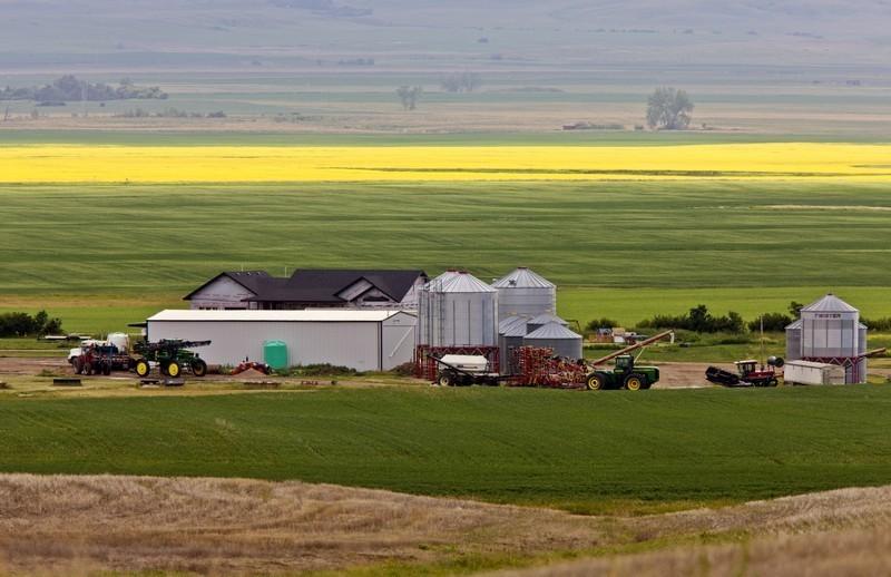 Farm near Mortlach Saskatchewan