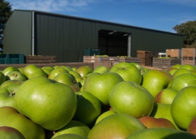 prefabricadas-agricolas (6)